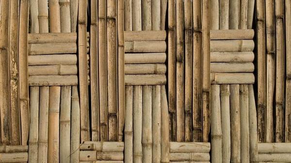 бамбуковые разновидности обоев для стен  фото