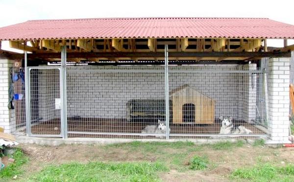 вольер для собаки на участке фото