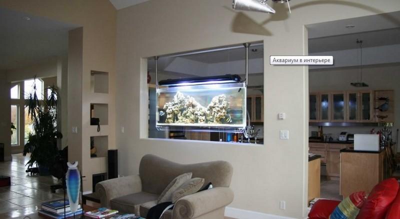 аквариум в стене между комнатами фото