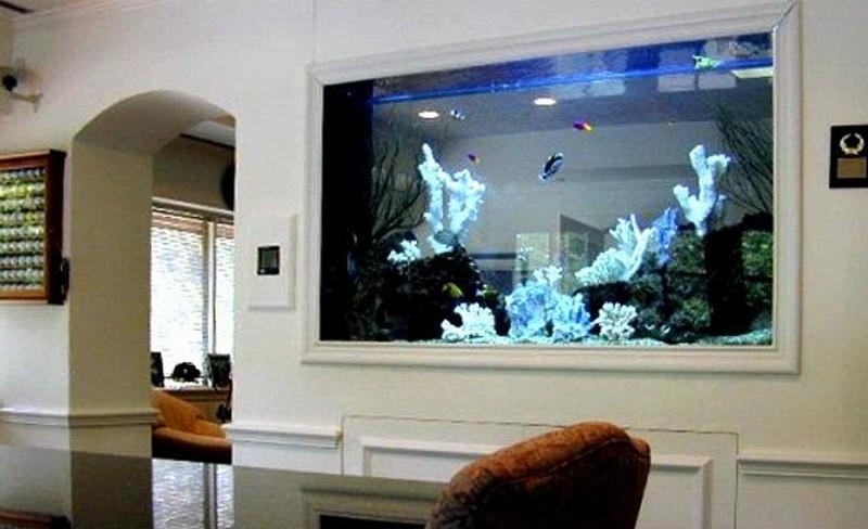 как сделать аквариум в стене фото